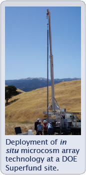 Image with caption picture of Deployment of in situ microcosm array technology at a DOE Superfund site.