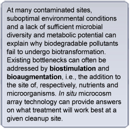 Text box stating: At many contaminated sites, suboptimal environmental conditions and a lack of sufficient microbial diversity and metabolic potential can explain why biodegradable pollutants fail to undergo biotransformation. Existing bottlenecks can often be addressed by biostimulation and bioaugmentation, i.e., the addition to the site of, respectively, nutrients and microorganisms. In situ microcosm array technology can provide answers on what treatment will work best at a given cleanup site.