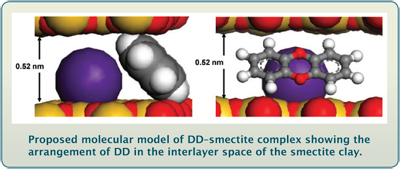 Picture of proposed DD-smectite complex.