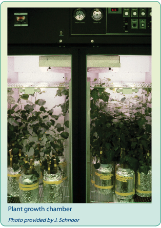 Photo of plant growth chamber..