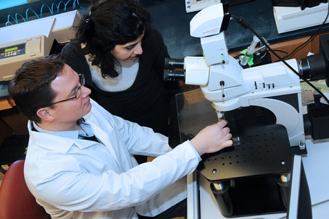 Study authors Connor and Lama Mulki, M.D., use a microscope in the Connor lab at Harvard Medical School. (Photo courtesy of Kip Connor)