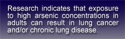 text box stating: Research indicates that exposure to high arsenic concentrations in adults can result in lung cancer and/or chronic lung disease.