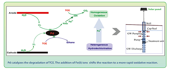 diagram of Pd catalyzes the degradation of TCE. The addition of Fe(II) ions  shifts the reaction to a more rapid oxidative reaction.